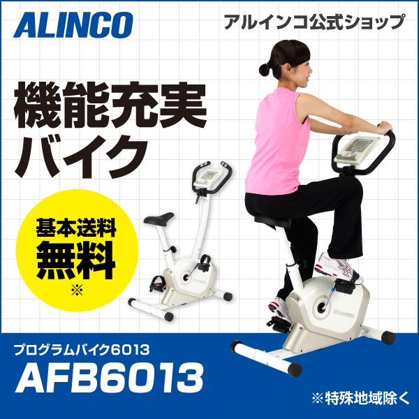 プログラムバイク 6013/AFB6013