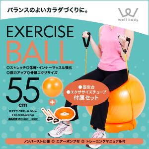 エクササイズボール55セット/EXG124DX