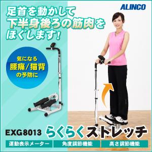 EXG8013